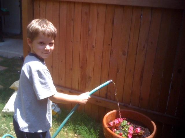 Milo flowerpot