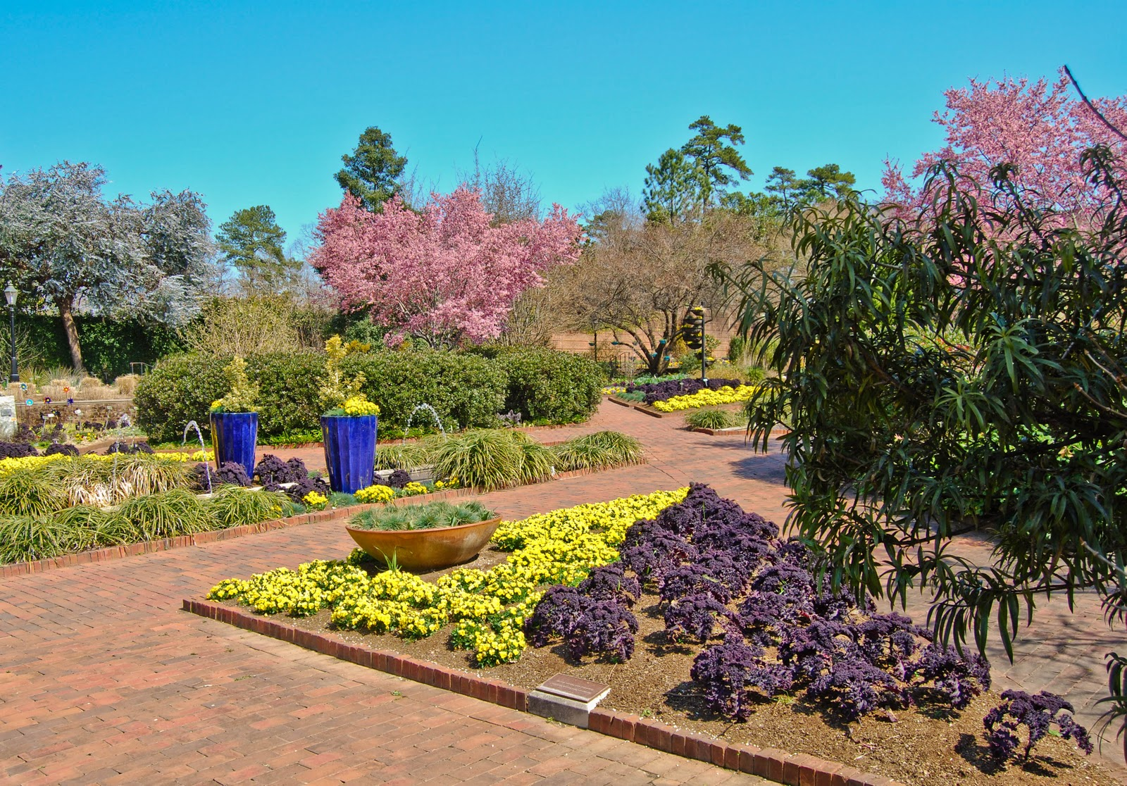 Beau Desire Exceeds The Bounds Of Any Garden Ed Madden S Prodigal. Amazing Botanical  Gardens Columbia Sc ...
