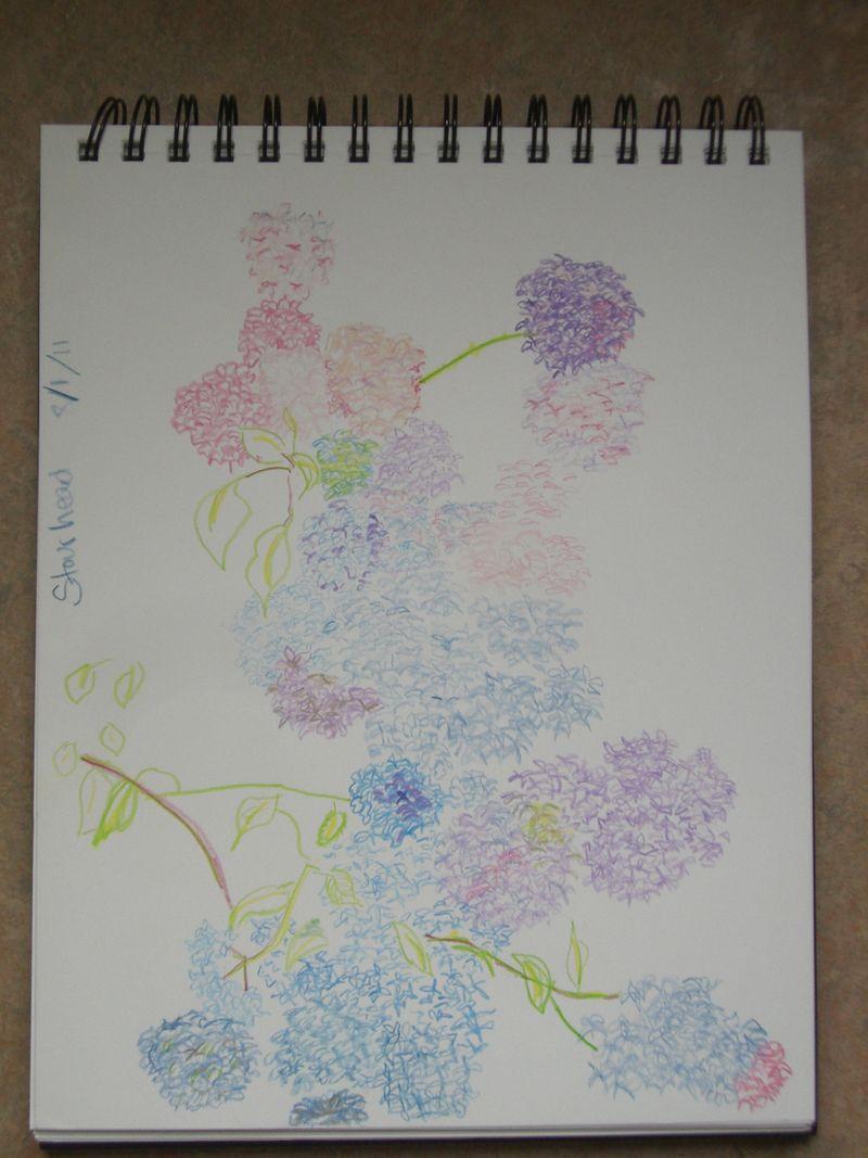 Stourhead sketch